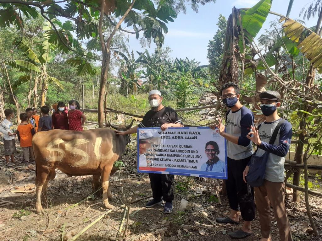 OK OCE Kemanusiaan Salurkan Bantuan Kurban Sandiaga Untuk Warga Kampung Pemulung